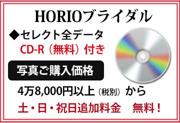 セレクト全データCD-R無料